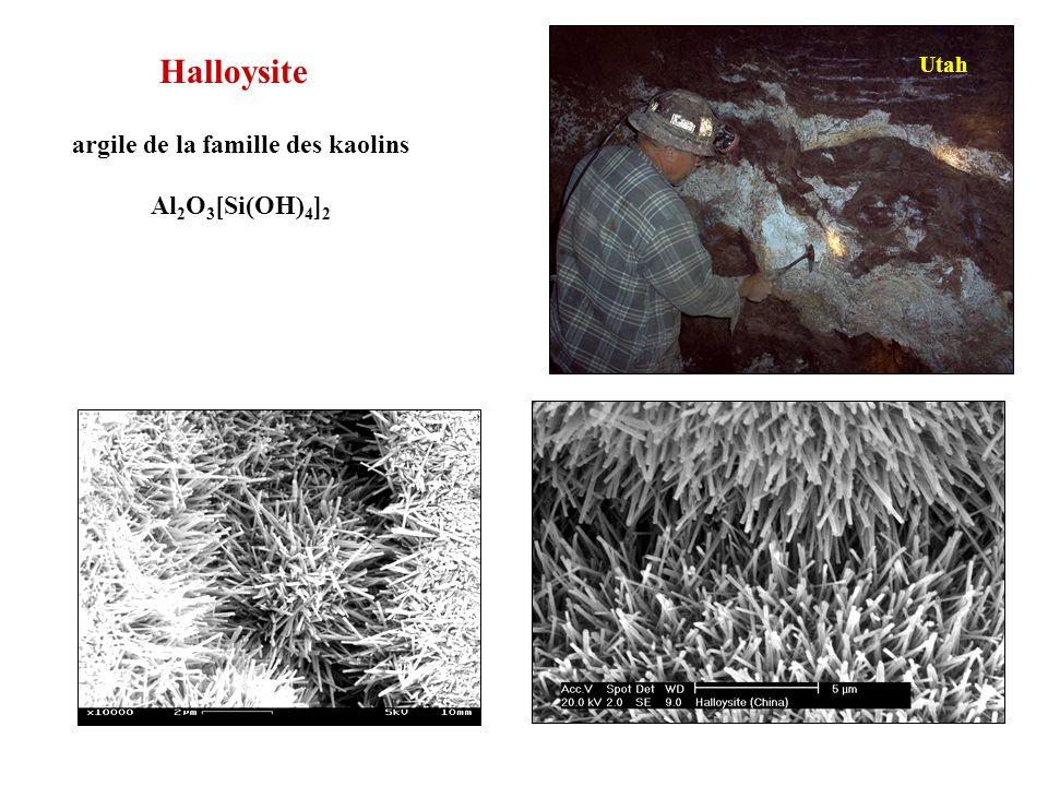 Halloysite Utah argile de la famille des kaolins Al2O3[Si(OH)4]2